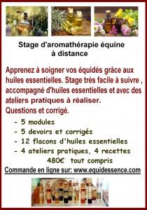 stage aromathérapie
